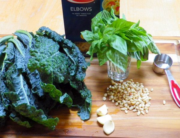 creamy kale pesto ingredients