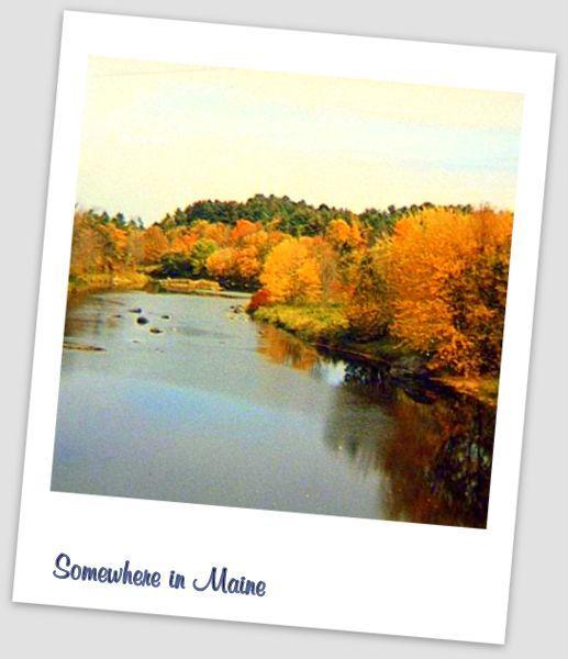 fall in bangor