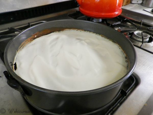sour cream layer