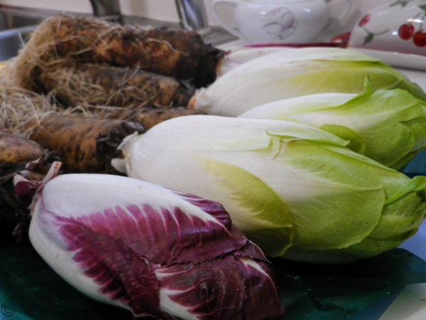 endive on the root